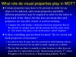what role do visual properties play in mot