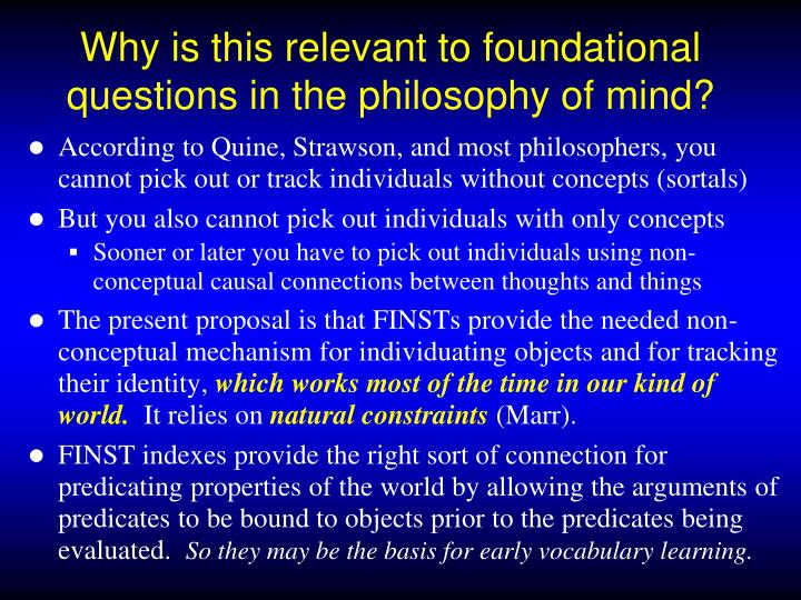 Why is this relevant to foundational questions in the philosophy of mind?