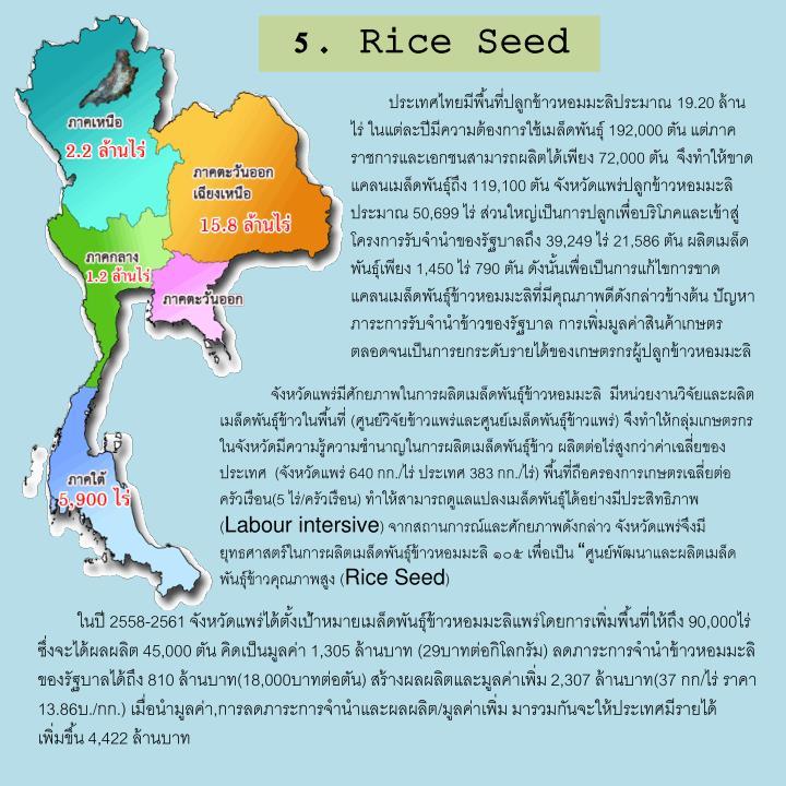 5. Rice Seed