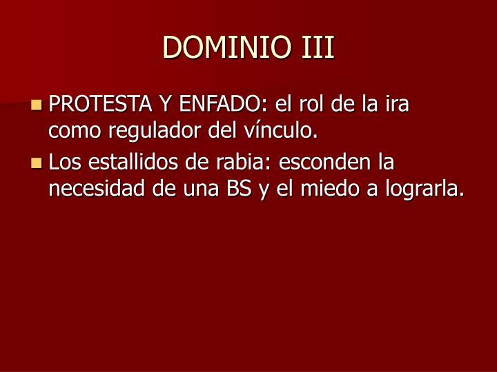 DOMINIO III