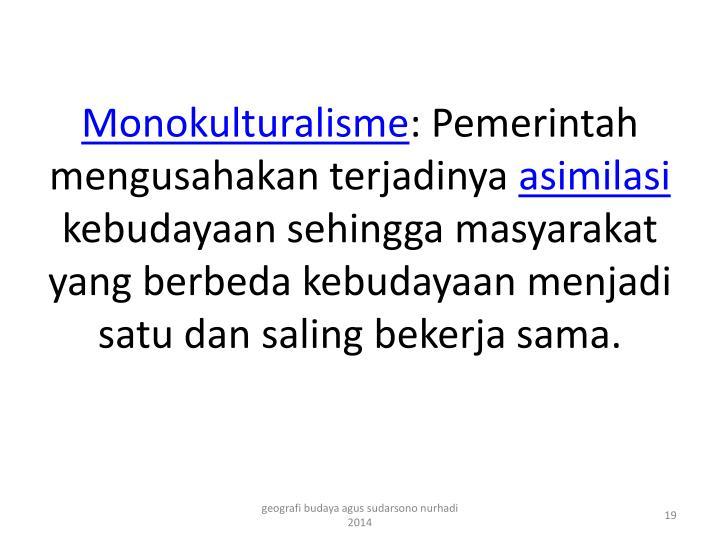 Monokulturalisme
