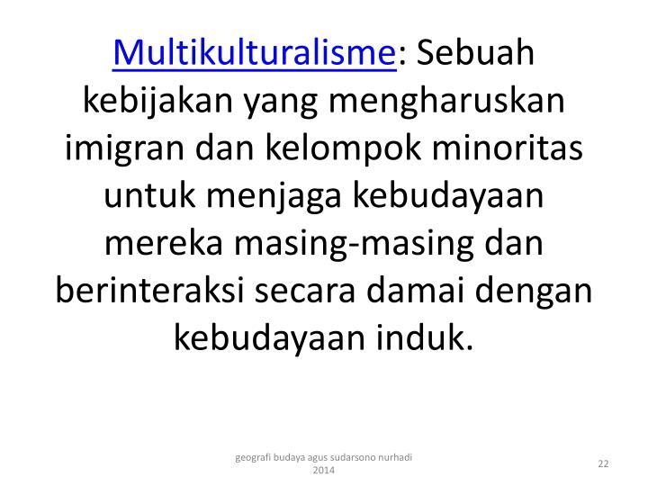Multikulturalisme