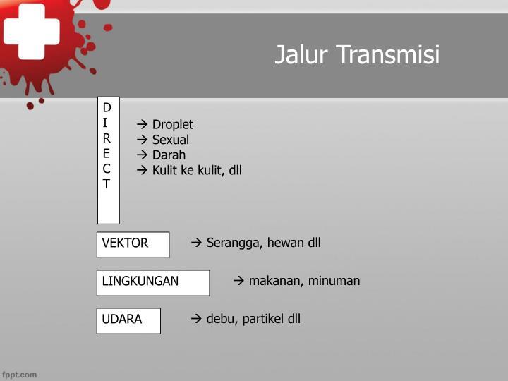 Jalur Transmisi