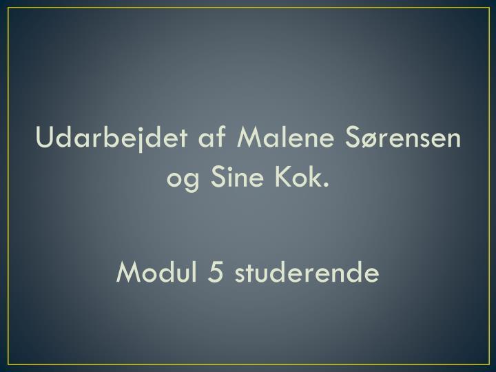 Udarbejdet af Malene Sørensen og Sine Kok.