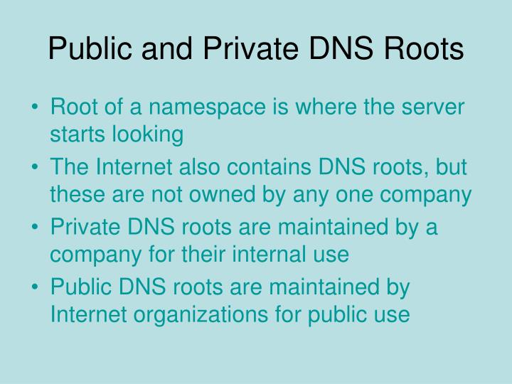 Public and Private DNS Roots
