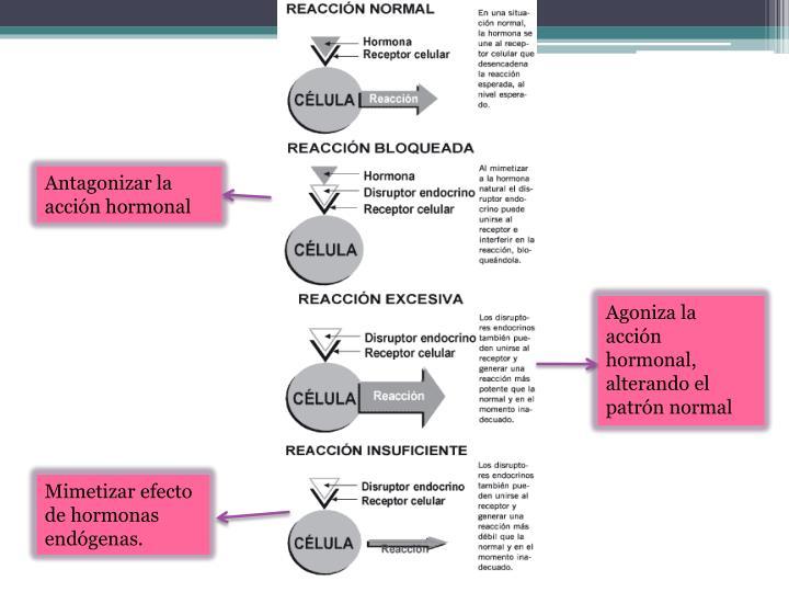 Antagonizar la acción hormonal