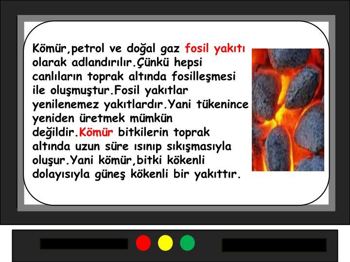 Kömür,petrol ve doğal gaz