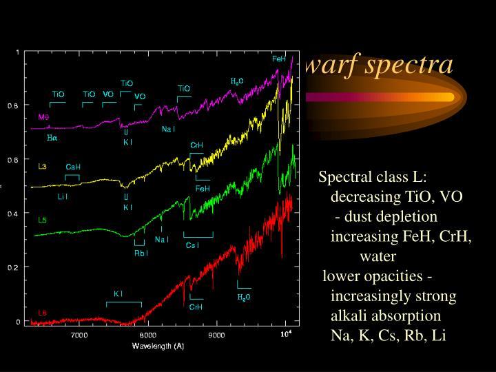 Cool dwarf spectra
