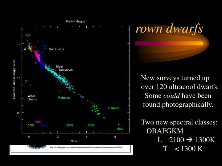 Field brown dwarfs