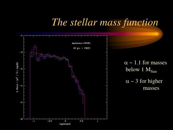 The stellar mass function