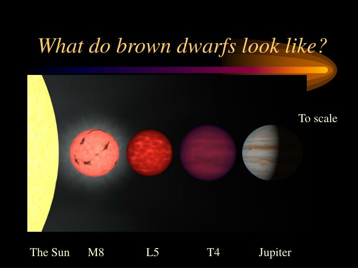 What do brown dwarfs look like?