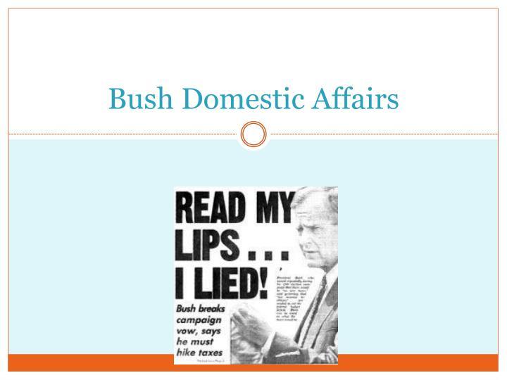 Bush Domestic Affairs