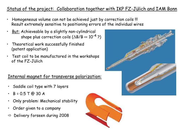 Status of the project:  Collaboration together with IKP FZ-Jülich and IAM Bonn
