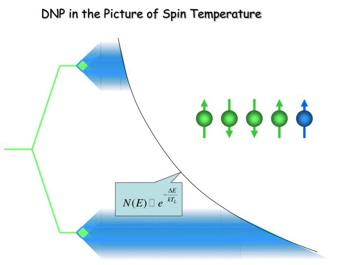 DNP in the Picture of Spin Temperature