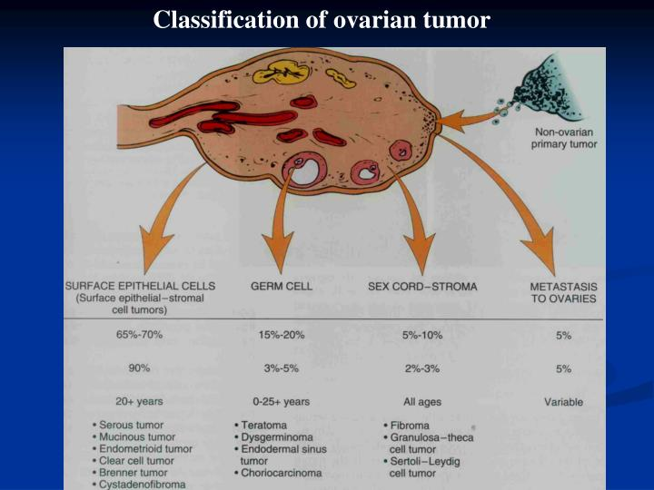 Classification of ovarian tumor