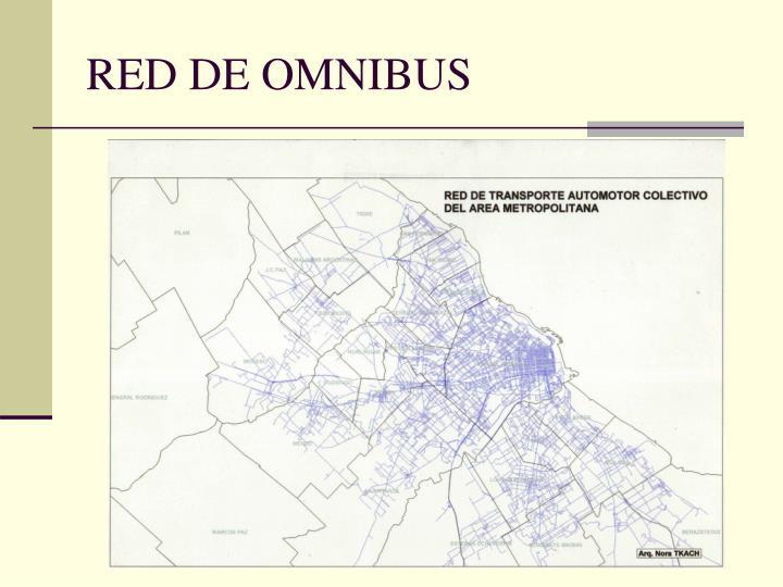 RED DE OMNIBUS