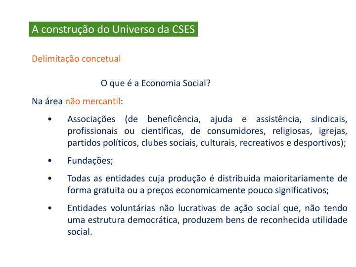 A construção do Universo da CSES