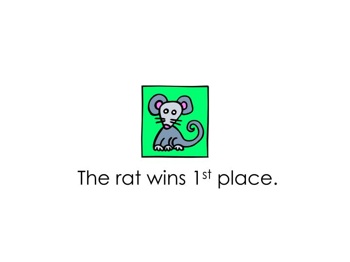 The rat wins 1