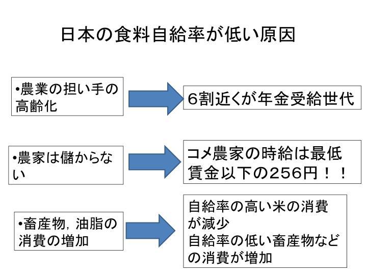 日本の食料自給率が低い原因