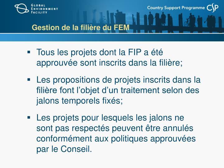 Gestion de la filière du FEM