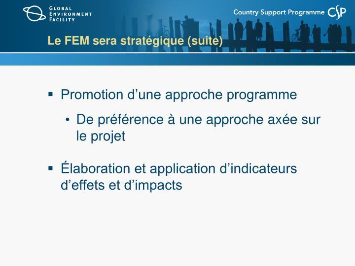 Le FEM sera stratégique
