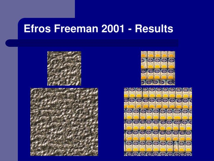 Efros Freeman 2001 - Results