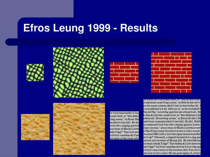 Efros Leung 1999 - Results