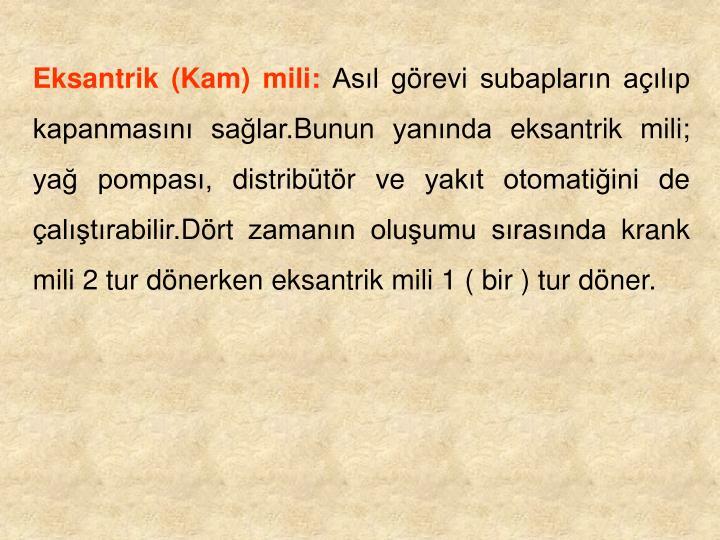 Eksantrik (Kam) mili: