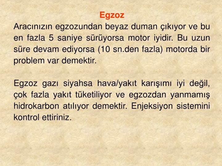 Egzoz