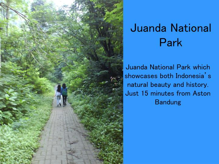 Juanda National Park which showcases both Indonesia's natural beauty and history.