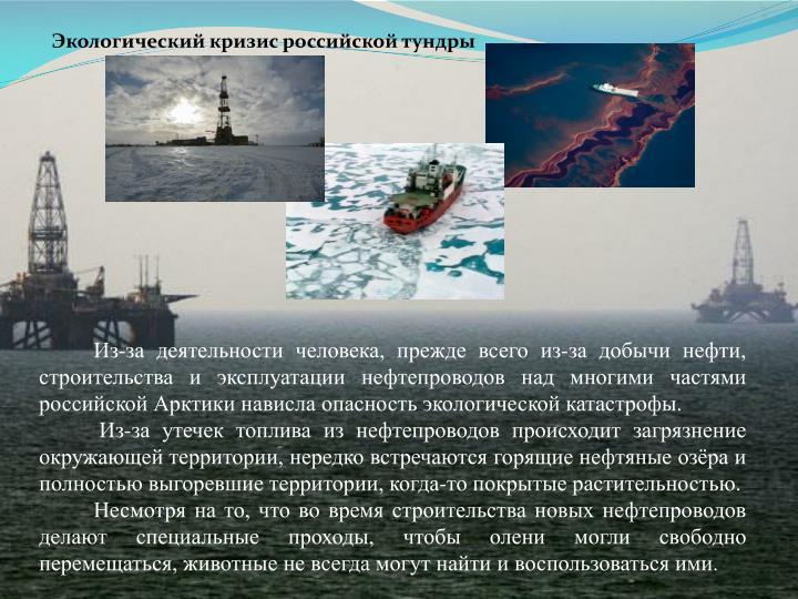 Экологический кризис российской тундры