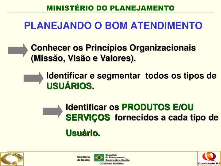Conhecer os Princípios Organizacionais (Missão, Visão e Valores).