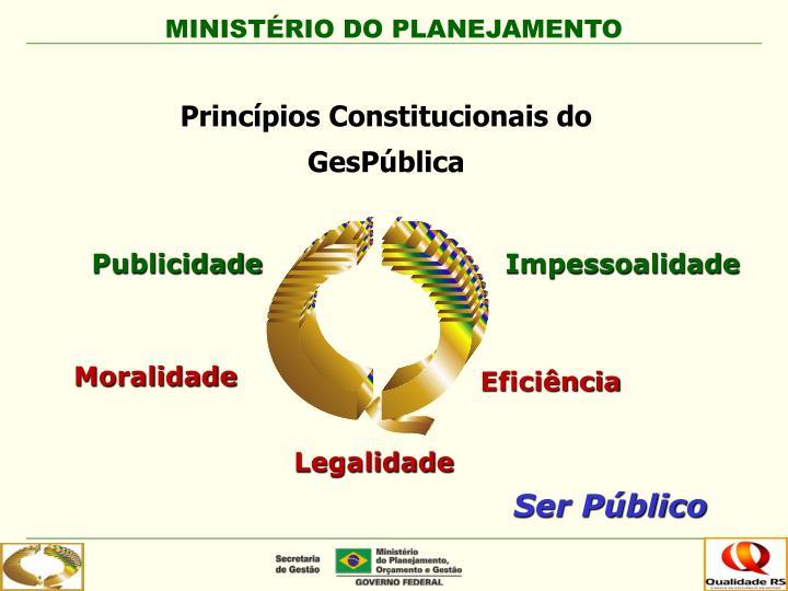 Princípios Constitucionais do