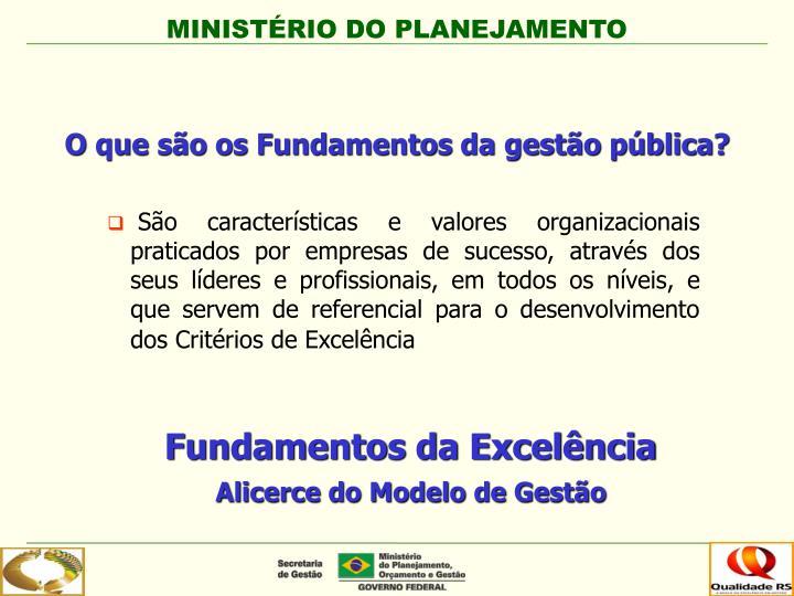 O que são os Fundamentos da gestão pública?