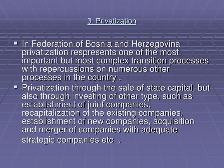 3. Privatization