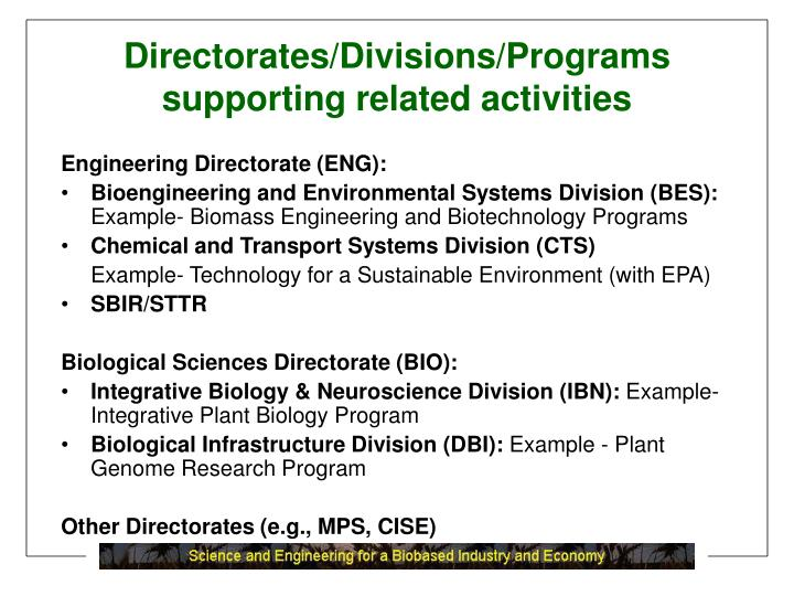 Directorates/Divisions/Programs supporting related activities