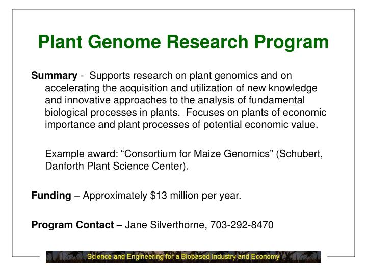 Plant Genome Research Program