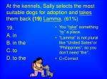 at the kennels sally selects the most suitable dogs for adoption and takes them back 19 lamma 61
