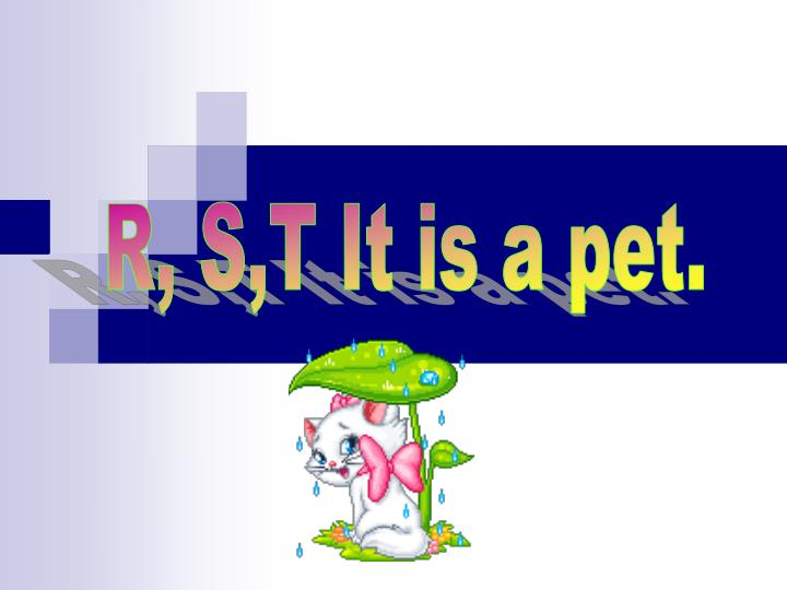 R, S,T It is a pet.