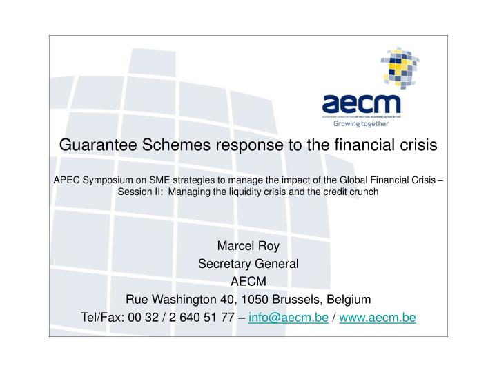 Guarantee Schemes response to the financial crisis