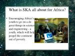 what is ska all about for africa