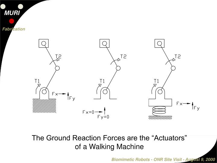 "The Ground Reaction Forces are the ""Actuators"" of a Walking Machine"