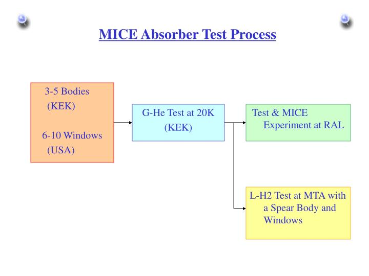 MICE Absorber Test Process