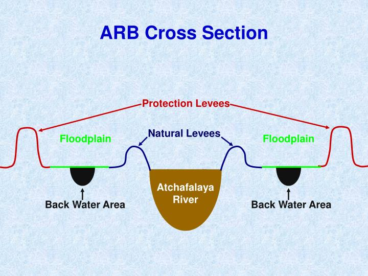ARB Cross Section