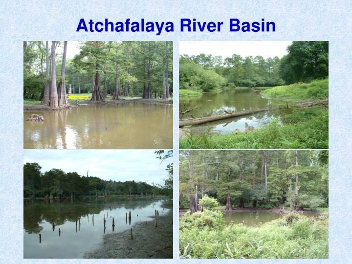Atchafalaya River Basin