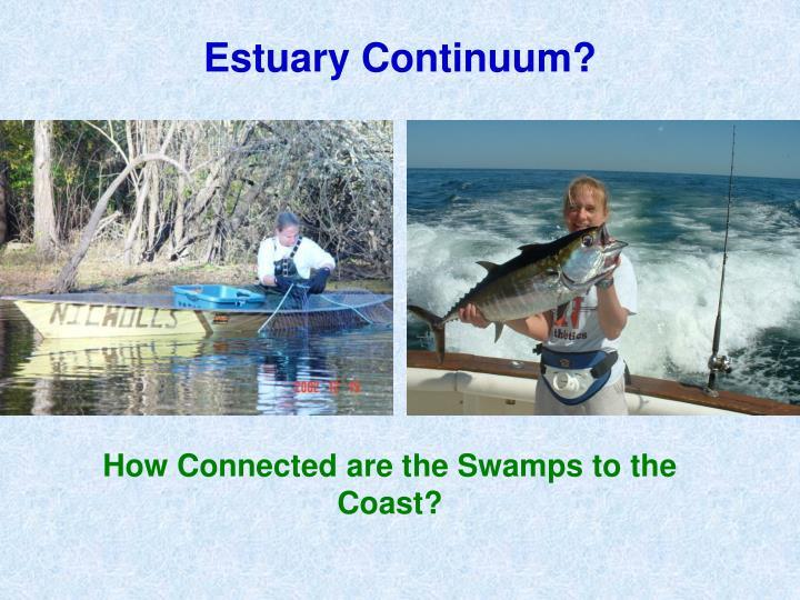 Estuary Continuum?