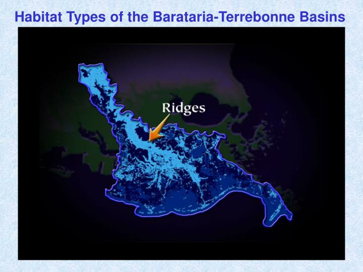 Habitat Types of the Barataria-Terrebonne Basins
