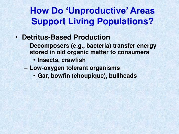 How Do 'Unproductive' Areas Support Living Populations?