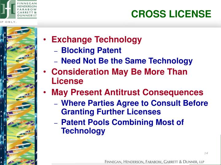 CROSS LICENSE