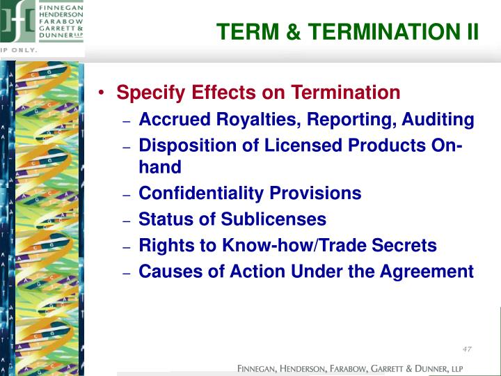 TERM & TERMINATION II